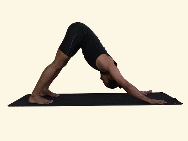Adho-Mukha-Svanasana-Downward-Facing-Dog-Posture