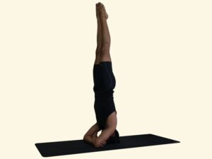 Baddha-hasta-Sirshasana-Headstand-4