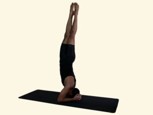 Parsva-sirshasana-twisted-headstand