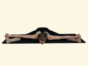 Upavistha-Konasana-A-Wide-angle-seated-forward-bend