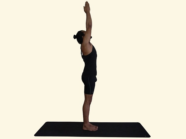 Urdvah-Hastasana-Upward-Hands-Posture-upwards-Salute