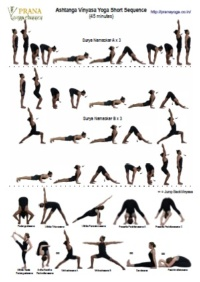 vinyasa yoga sequence for beginners  blog dandk
