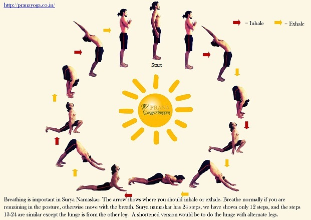 Surya namaskar yoga video free download