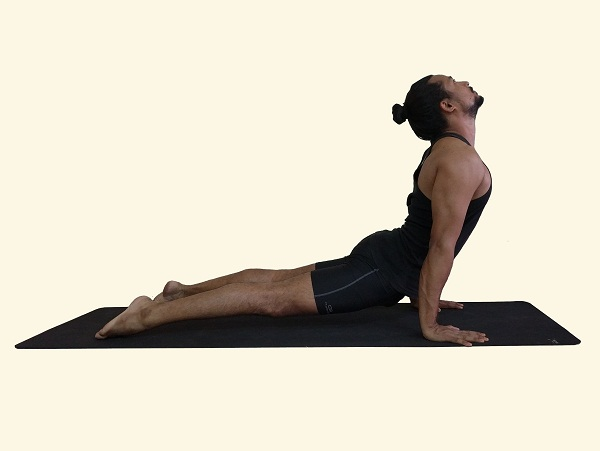 urdhva-mukha-svanasana-upwards-facing dog